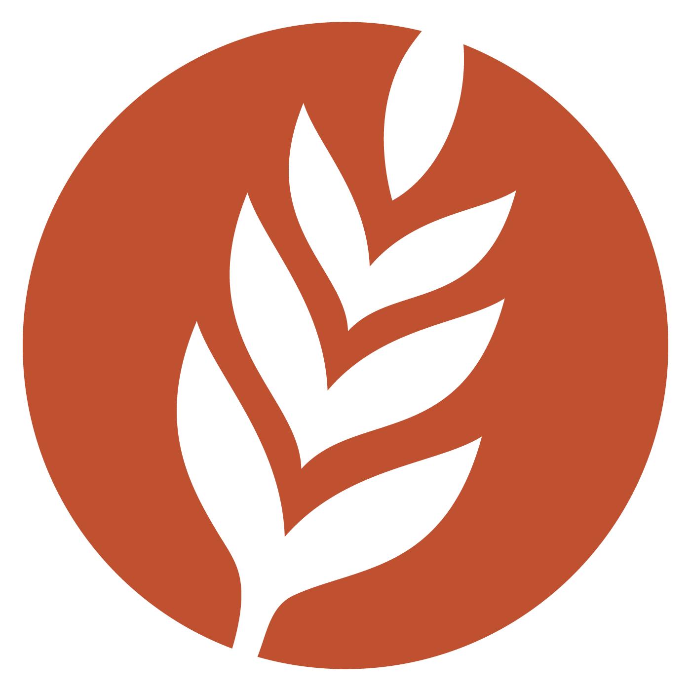 The Woodlands UMC: Harvest Audio